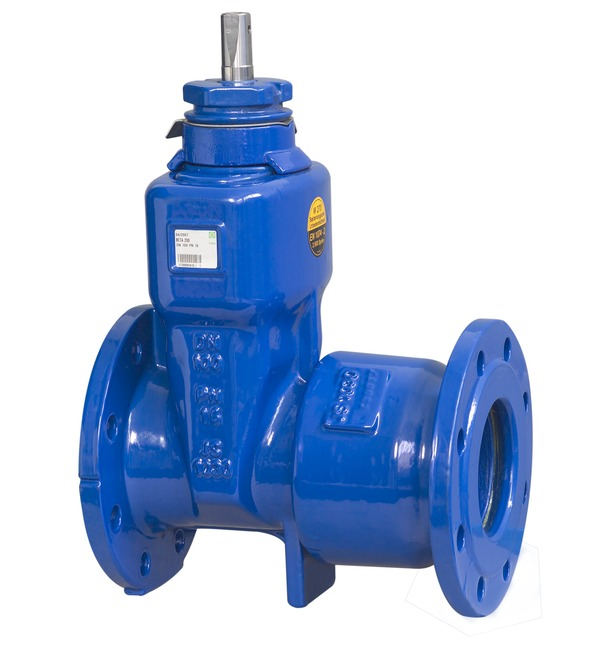 VAG BETA<sup>®</sup> 200 TS Replacement Valve