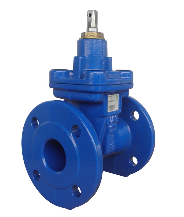 VAG EKO<sup>®</sup><em>plus</em> Gate Valve BS